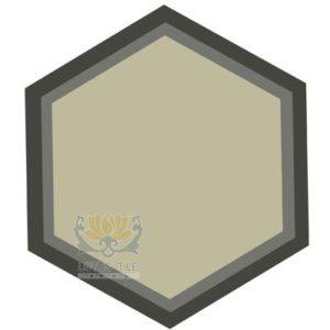 Gạch lục giác L-HT09++