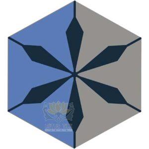 Gạch lục giác L-HT12++