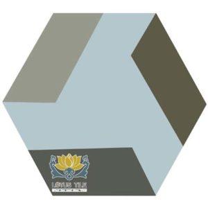Gạch lục giác L-HT15++
