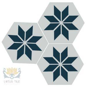 Gạch lục giác L-HT19++