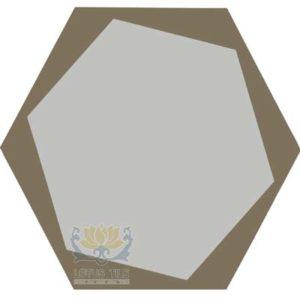 Gạch lục giác L-HT21++